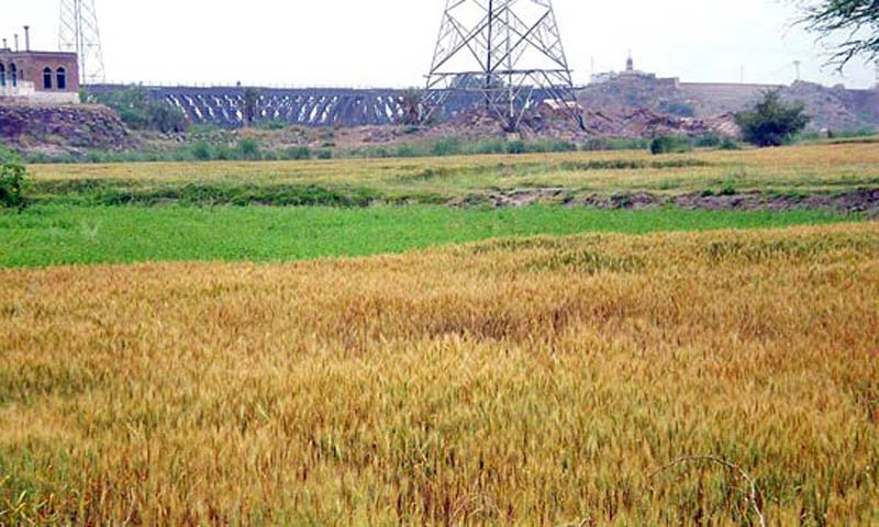 Agriculture Land In Pakistan